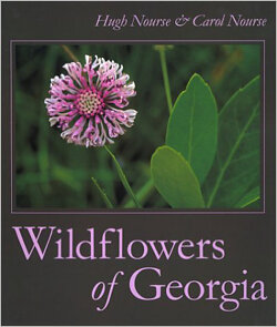Wildflowers of Georgia