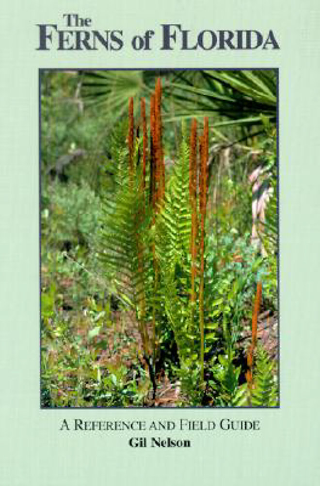 The Ferns of Florida